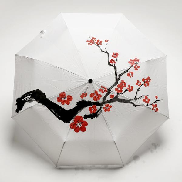 Raindom umbrella SD Works