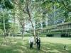 web_STD01-Singapore-Pavilion,-16th-International-Architecture-Exhibition,-La-Biennale-di-Venezia