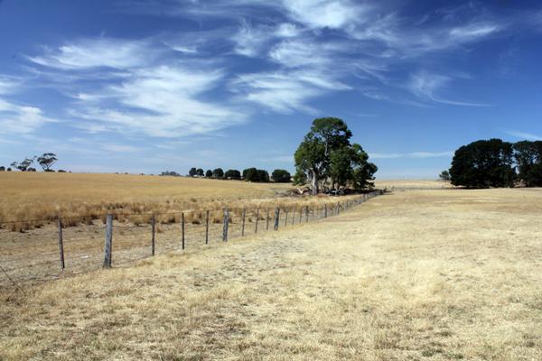 The wide open pastures of Bally Glunin Park are located near Hamilton, Victoria, Australia