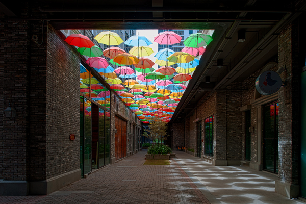 A canopy of umbrellas shelters one of the courtyards