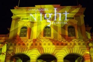 Ngiht Light Festival