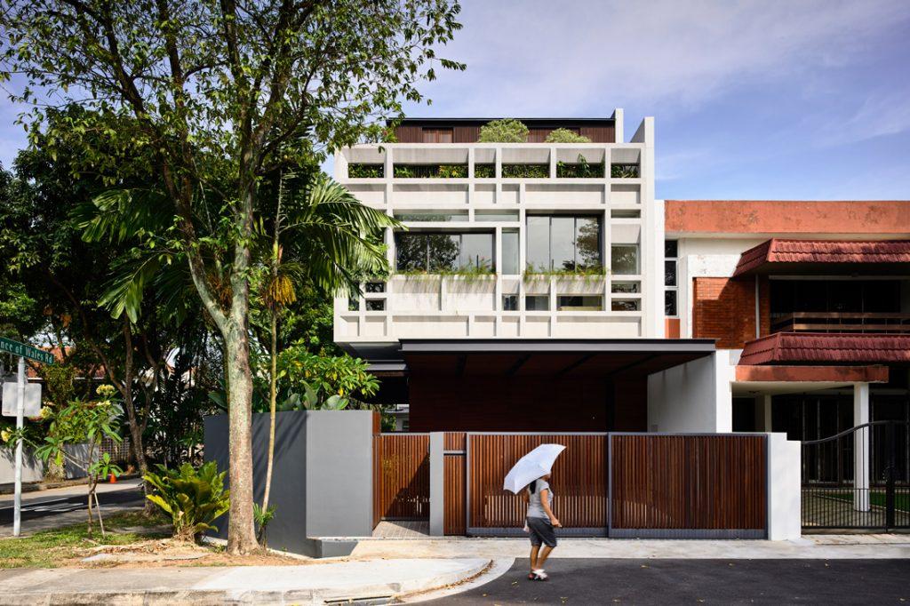 hyla verdant-verandahs_201604-01
