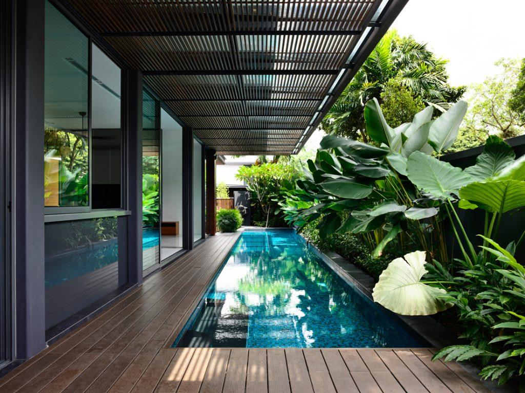 hyla verdant-verandahs_201604-07
