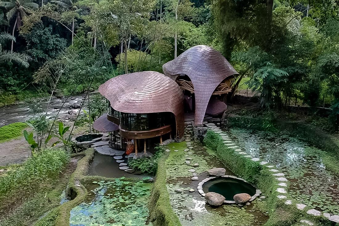 Nurture-nature-project-Bambu-Indah-by-IBUKU