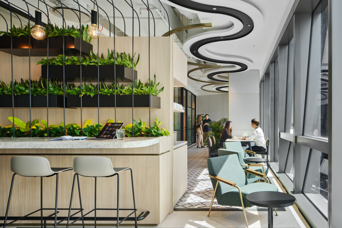 Workplace-design-First-Sentier-Investors-office-by-Woods-Bagot