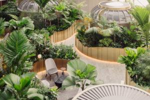 Birds eye view of the jungle atrium in Citi Wealth Hub