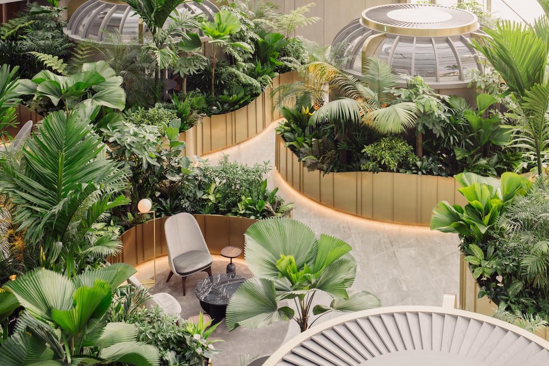 Citi Wealth Hub brings a colossal jungle inside