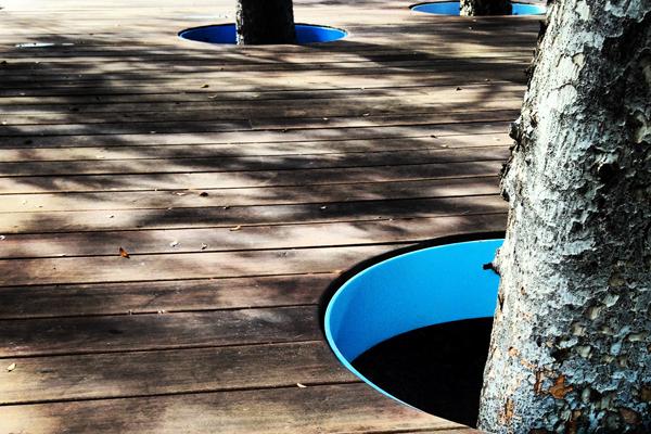 decking prince alfred park