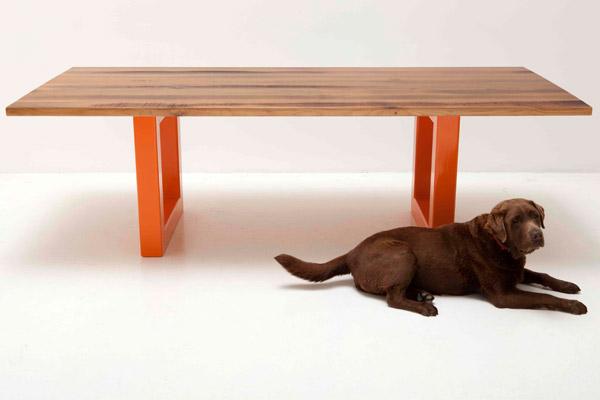 BROWN DOG SETTLES IN SYDNEY