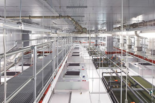The UK gets a new National Graphene Institute from Jestico + Whiles