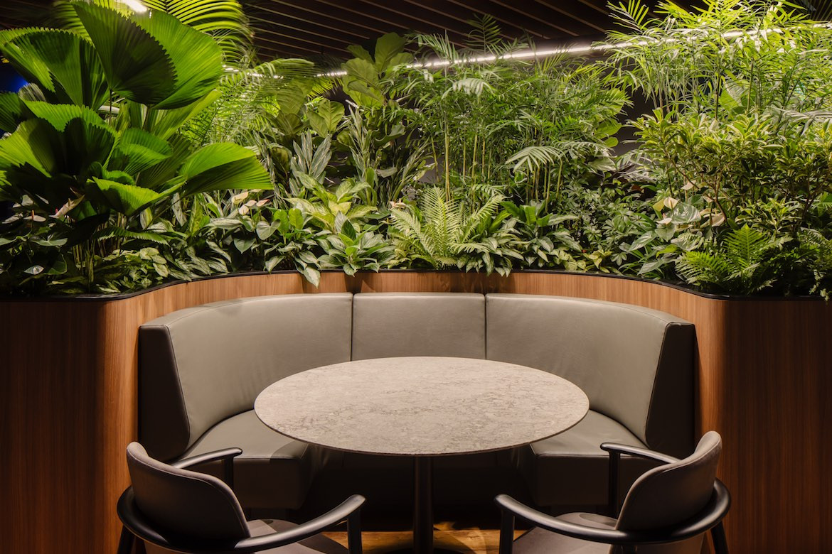 Desks and greenery in the Citi Wealth Hub