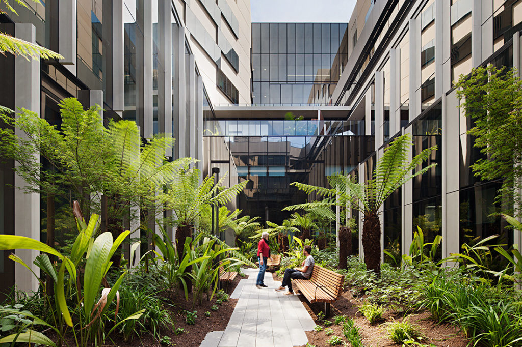 Bendigo Hospital by Bates Smart and Silver Thomas Hanley. Photo by Peter Clarke.