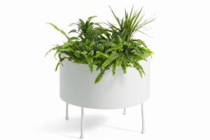 green pedestals 1
