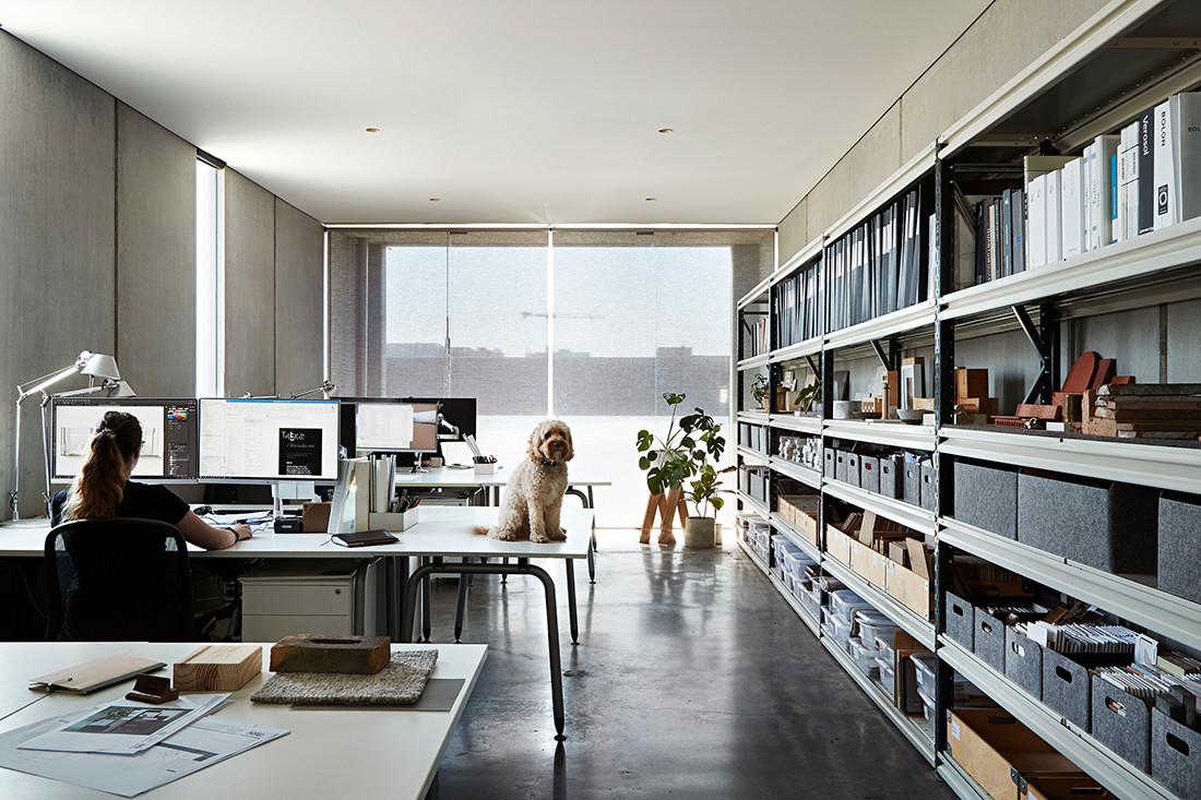 10 pet friendly workplaces that deserve design kudos