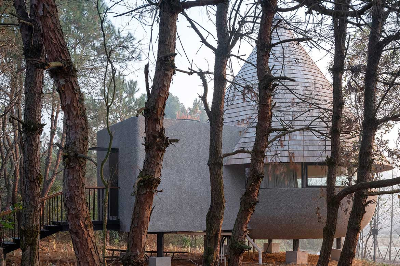 The Mushroom offers guests a meditative woodland escape