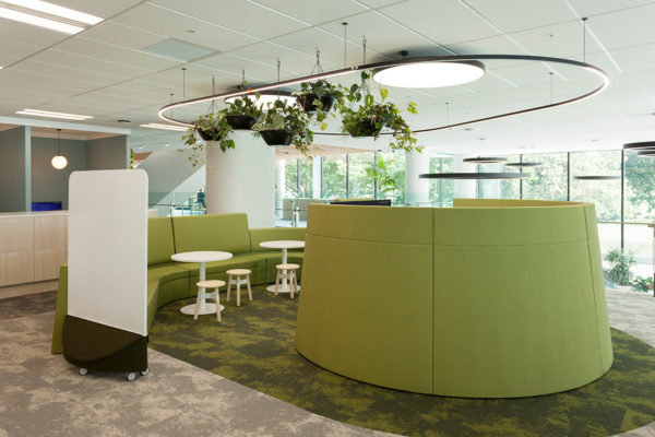 Whale Song modular carpeting hits a sustainable note for Southern Cross