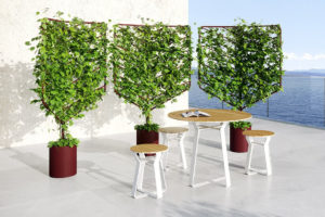 Botanical Planter Screens, designed by Helen Kontouris for Stylecraft.