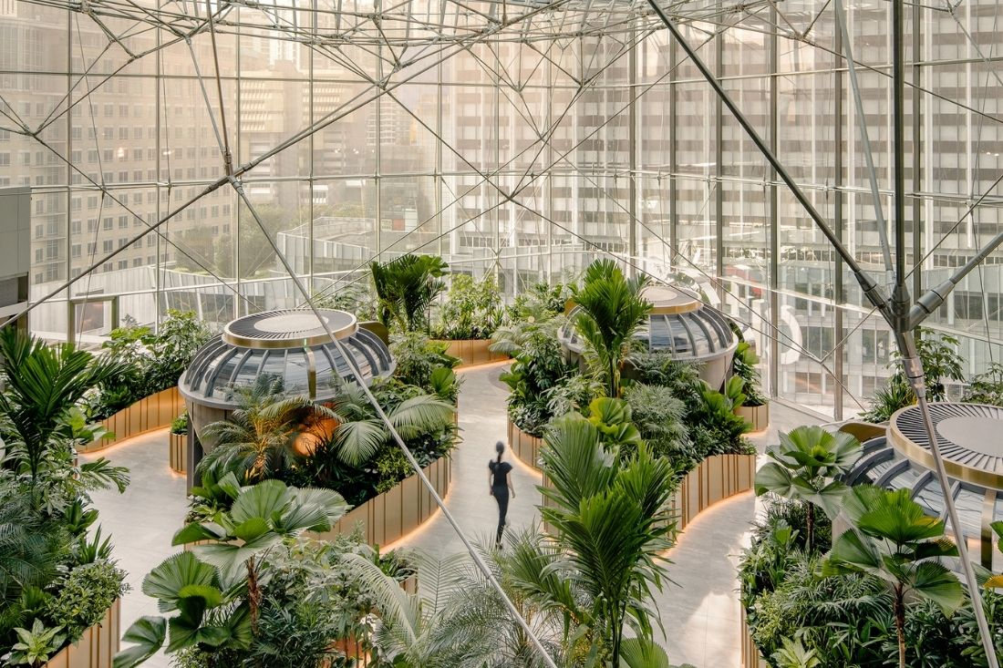 Biophilic design redefines the retail banking experience